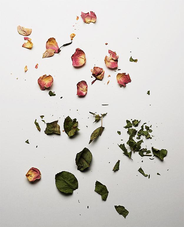 martin_vallin_flowers